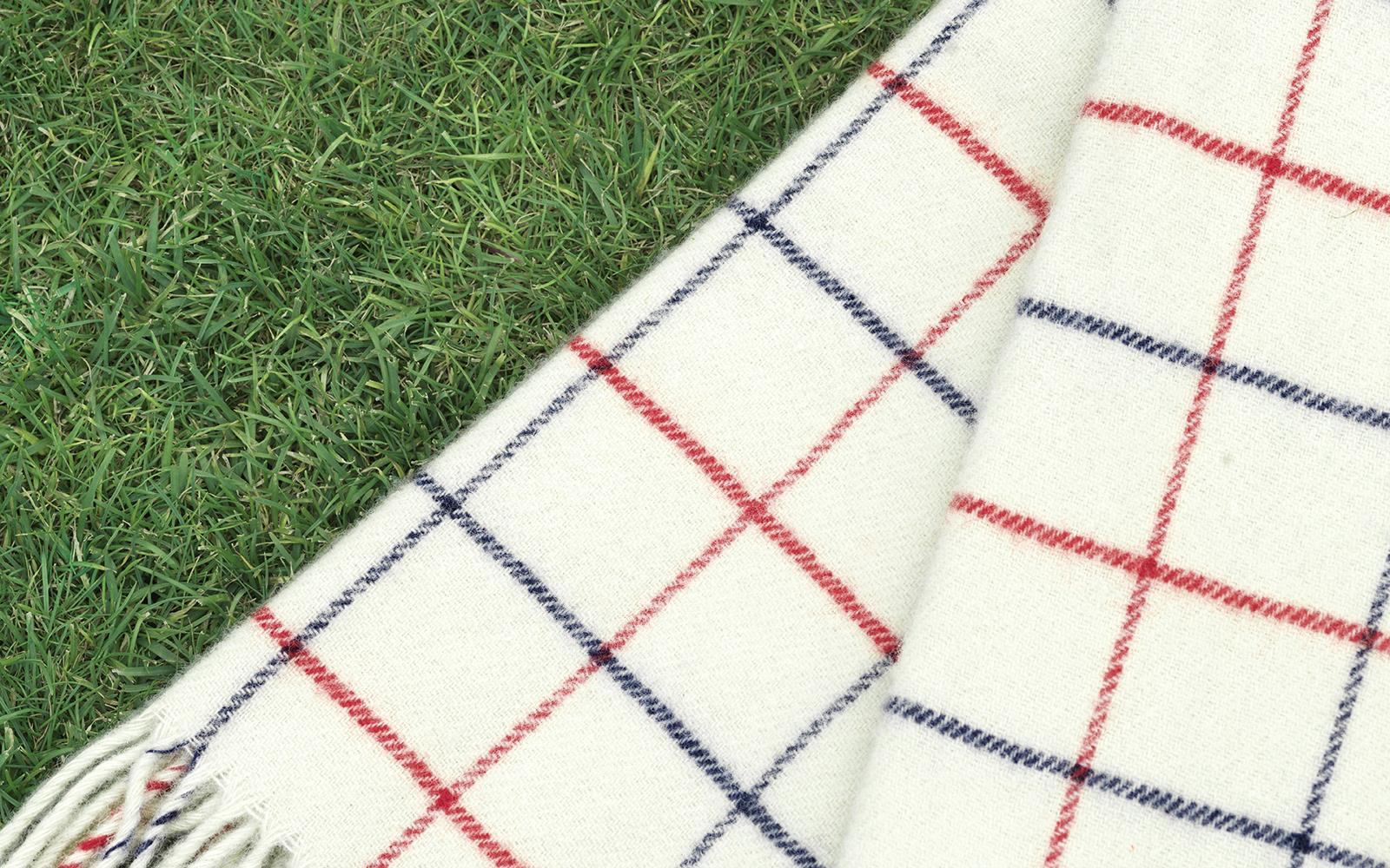 Throw Blanket Simple Check3